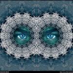 英語のことわざ【美は見る人の目の中にあり】