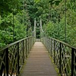 英語のことわざ【橋に着くまでは橋を渡るな】